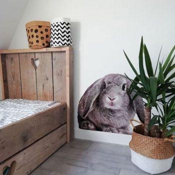 konijn-haas-muursticker-wandsticker-sticker-kinderkamer-echt